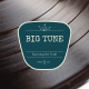 Big Tune 16 - Top 10 Songs of the 1950's