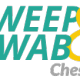 Sweep and swab Chester | 01244 293 046