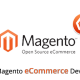 Magento Web Development Services
