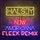 Halsey - New Americana (Fleek Remix)