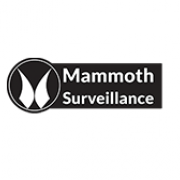 Mammoth.Surveillance.Camera