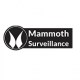Mammoth Surveillance Camera Systems