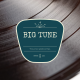 Big Tune 40 - Hidden Gems - Indie FolkRock II