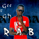 SLIM_GEE_-ARABA_ft__ICES_GH