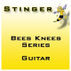 Stinger Guitar BsKs Series